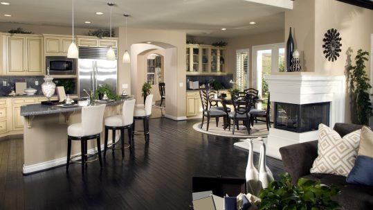 Cherry Creek Luxury Homes